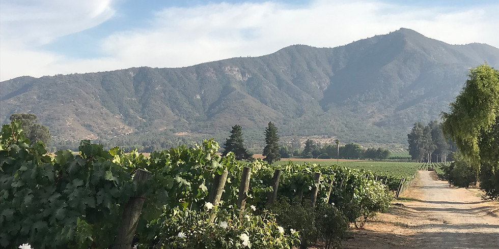 Virtual Tasting with Clos De Luz winemaker Mr. Gabriel Edwards for a Great Cause!