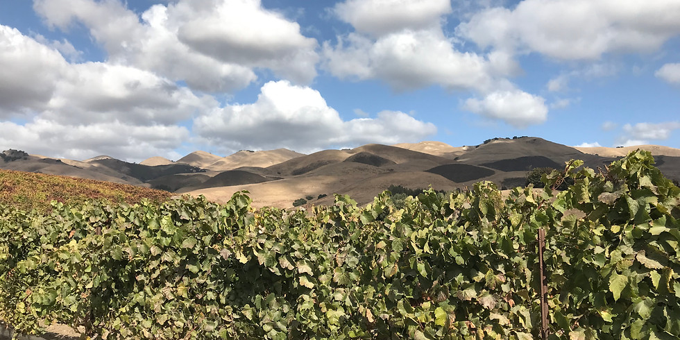 Santa Barbara Wine Tour with Kris Allred, Chief Meteorologist at WSAV