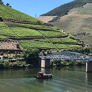 Harvest in Spain/Portugal