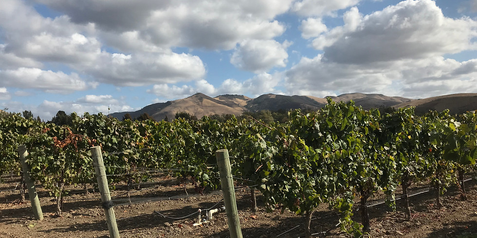 Over The Rainbow Benefit Wine Tasting