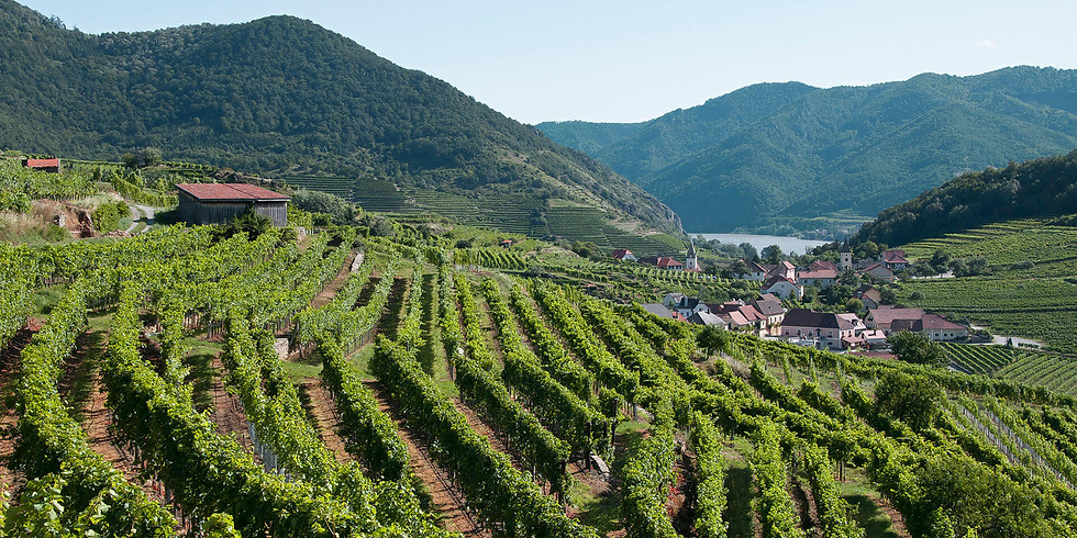 Austria in Fall for Harvest 2021