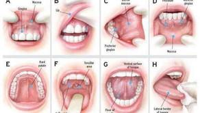 HPV Boğaz Kanserine Neden Olabilir mi?