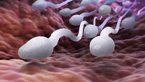 Sperm Alerjisi Hamileliği Zorlaştırır mı?