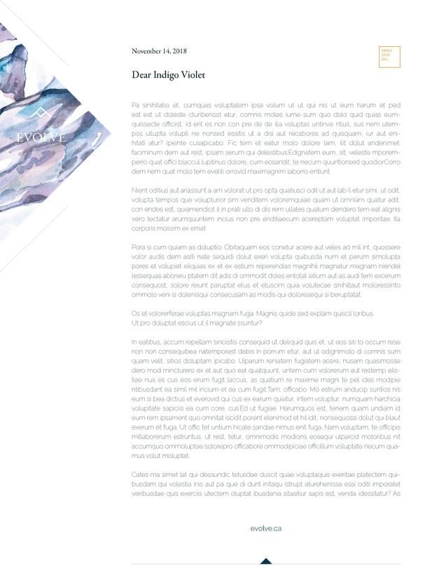 Emily Jane Inc Branding Application Sample
