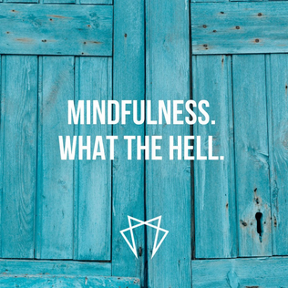 Momentum - mindfulness what the hell.png