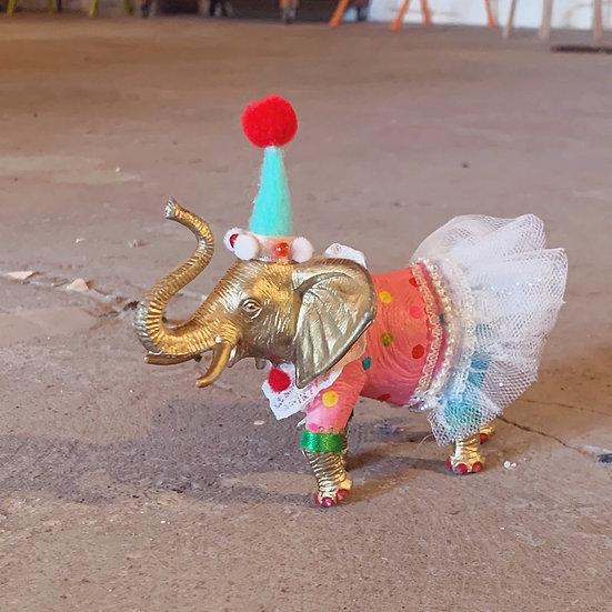Party Animal Takerie Kit