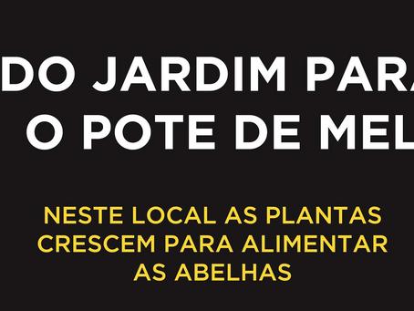 SRADR dos Açores assinala Dia Mundial da Abelha com criação de novo logotipo de sensibilização