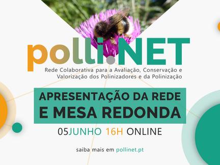 Apresentação pública da Rede Colaborativa polli.NET