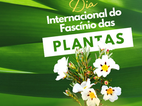 Dia Internacional do Fascínio das Plantas
