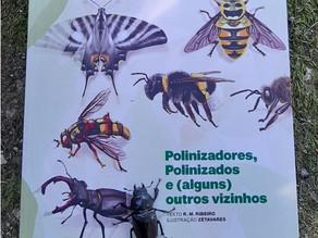 """Apresentação do livro """"Polinizadores, polinizados e alguns (outros) vizinhos"""""""