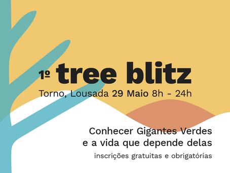 1º Tree Blitz