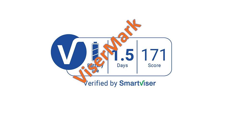 ViserMark Battery Label Score 171