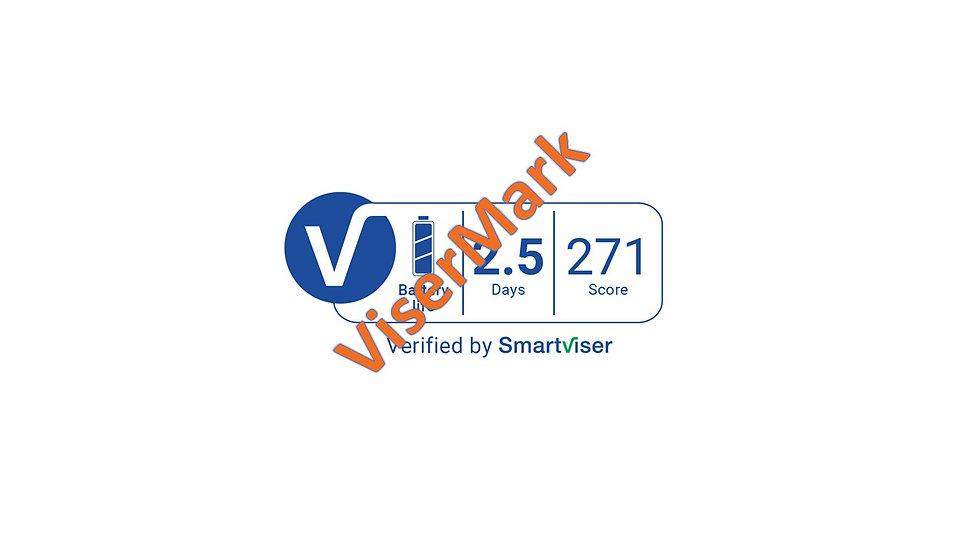 ViserMark Battery Label Score 271