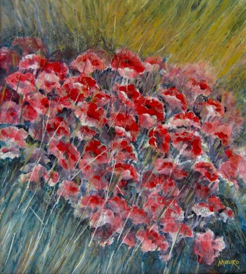 """Wild Poppies"""