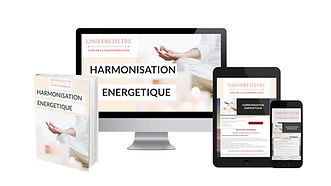 VISUEL-HARMONISATION-ENERGETIQUE-3.jpg