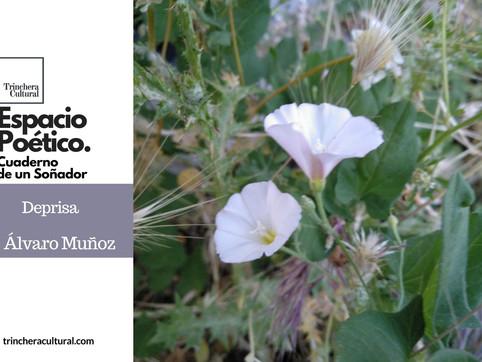 Deprisa (Poema de Álvaro Muñoz)