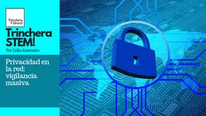 Privacidad en la red: vigilancia masiva. Trinchera STEM!