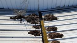 entretien toiture lyon