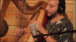 Eyal Fridman - Harp