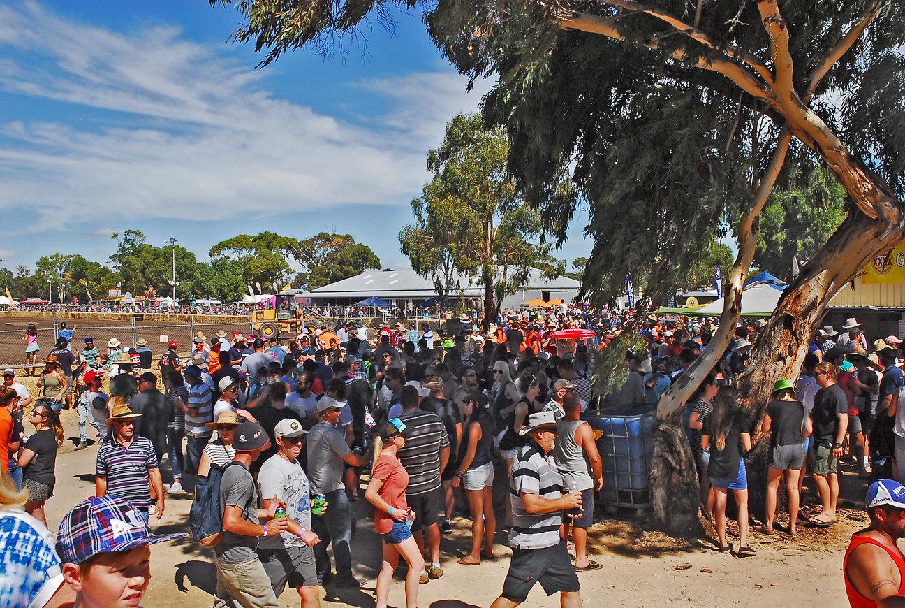 diesel and dirt derby crowd