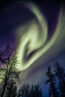 Aurora, Alaska- Alaska photographer