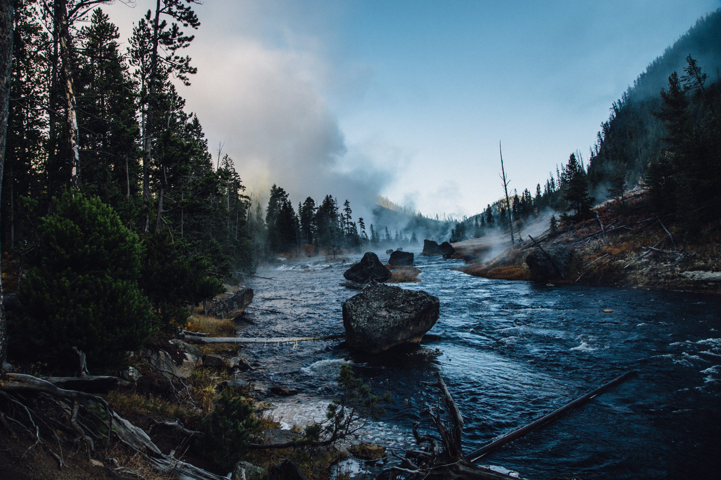 Gibbon River Morning- Yellowstone
