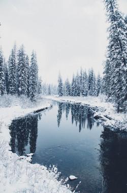 Montana Winter- Seeley Swan