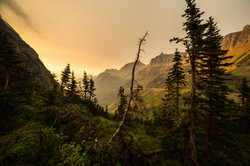Golden Hour, Montana