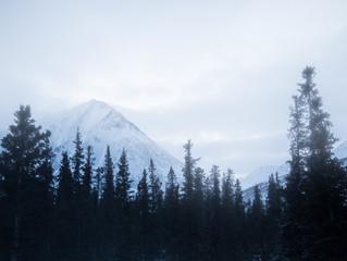 Feb 10. First Day in Alaska