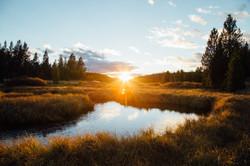 Gibbon River Sunset- Yellowstone