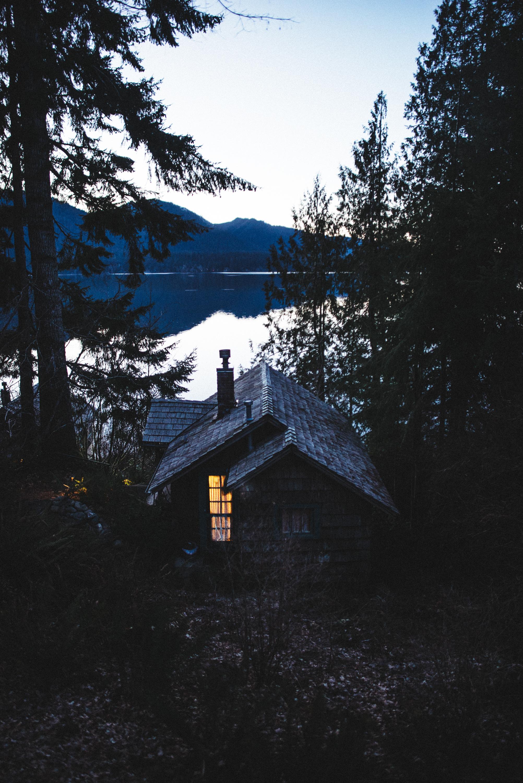 Cabin on the Lake- Washington