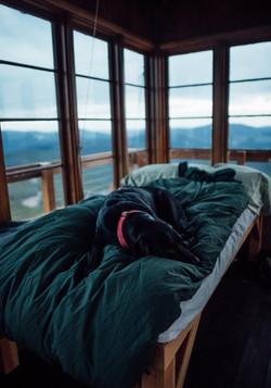 Dog Sleeping, Montana