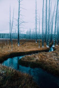 White River Sunsrise- Yellowstone