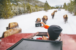 Jan15th-Tourism-SnowCoach-West Yellowstone-Hunter Day-0161