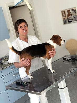 Vorsorge Beratung Tierarzt Esslingen Veterinär Tierarztpraxis Dr. vet. Kleinschroth Tiermediziner Hund Katze Kaninchen