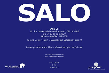 Fly SALO VIII.jpg