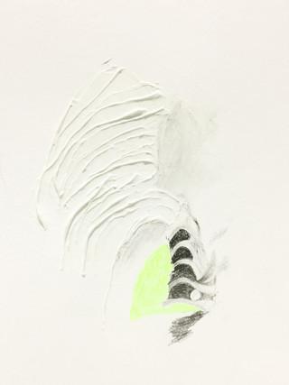 Graphite, pastel à l'huile et modeling paste sur papier 24 x 17cm