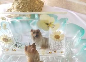 お花のカーテン