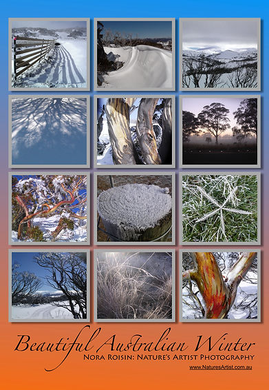 Beautiful Australian Winter collage of 12 photos of snowfields, snowgums and frosted grass.