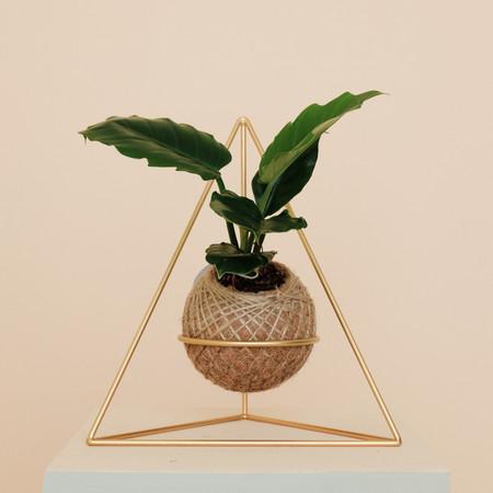 Triangular corner stand
