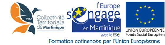logo-ctm-europe-web.jpg