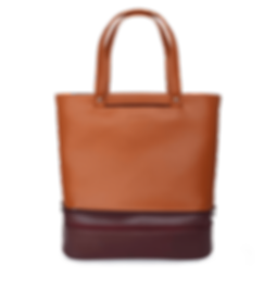 Tan Maroon Bag.png