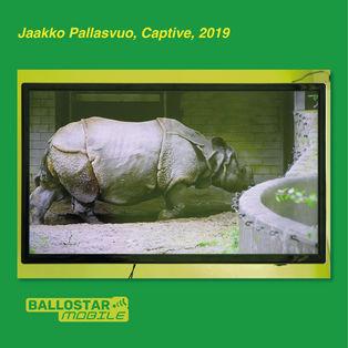 4-jaakko-pallasvuo-captive.jpg