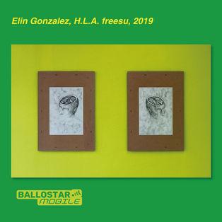 2-elin-gonzalez-freesu.jpg
