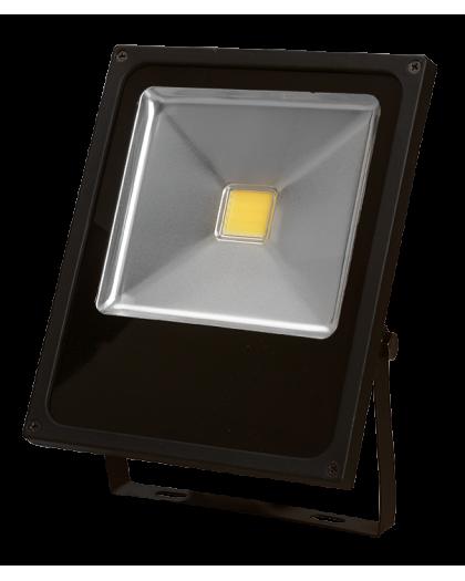 Proyector Exterior a LED SL-FL 30W Luz Dia