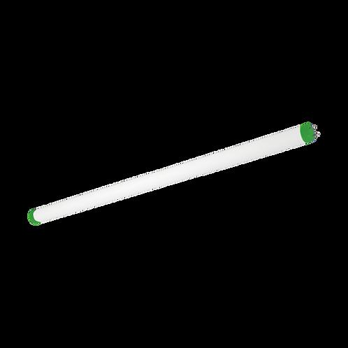 TUBO LED T8 G13 LUZ FRIA / LUZ NEUTRA / LUZ CALIDA