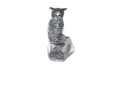 Eagle Owl on Rock