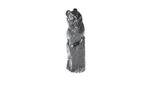 Long Eared Owl on Rock/