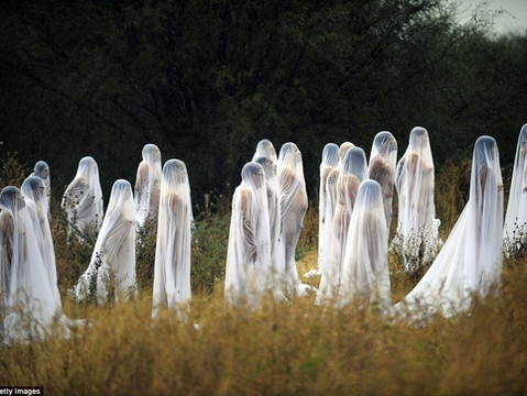 Getting Naked With 150 Strangers: Spencer Tunick Comes to Town