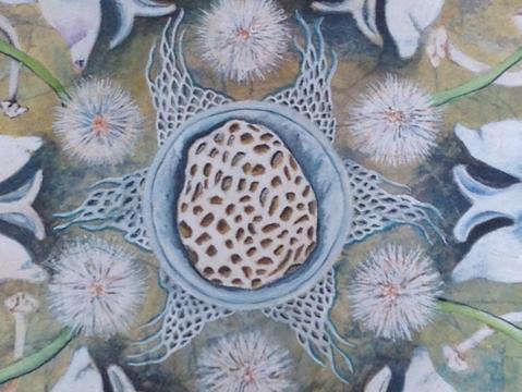 Creating The Newest Mandala